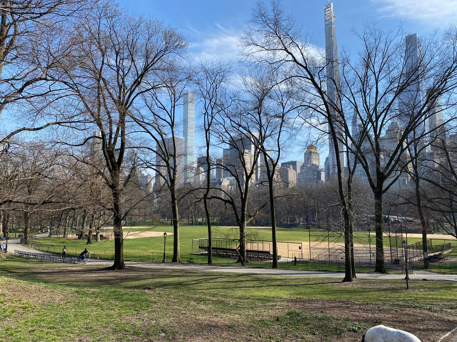 Deserted Central Park on a Friday afternoon (March 20th, 2020)